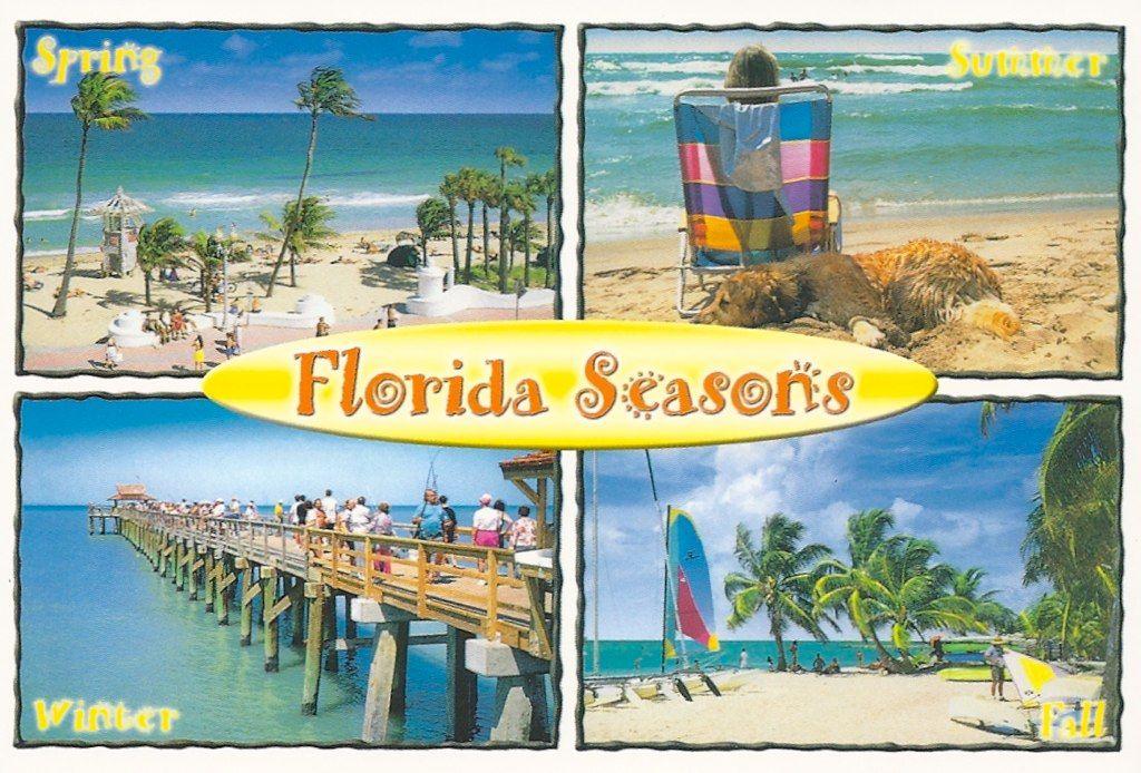 Florida Seasons Spring Summer Winter And Fall Florida Florida Sunshine Floridian
