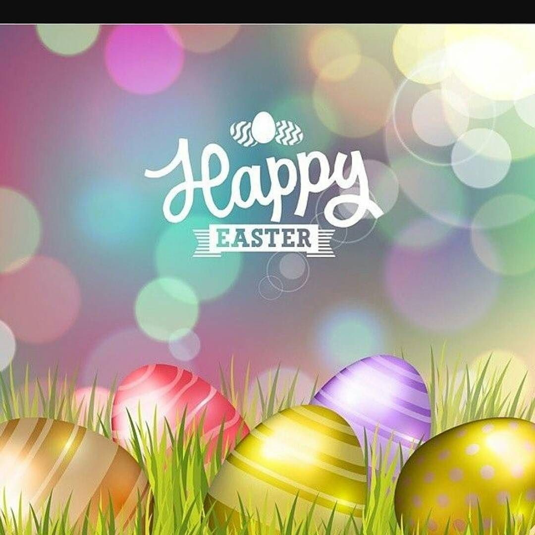 Happy easter from my family to yours youtube background easter pictures funny easter quotes happy easter quotes quotes for easter kristyandbryce Gallery