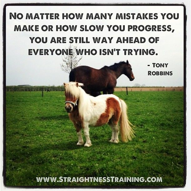 No matter how many mistakes you make Or how slow you progress, You're still way ahead of everyone Who isn't trying. -Tony Robbins