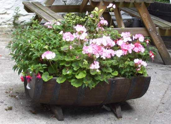 DIY Wine Barrel Planters :: Best Home Design Ideas