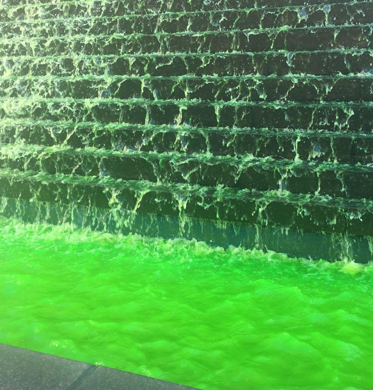 Lime, Green, Toxic, Y2K, Hazard, Aesthetic, Slime