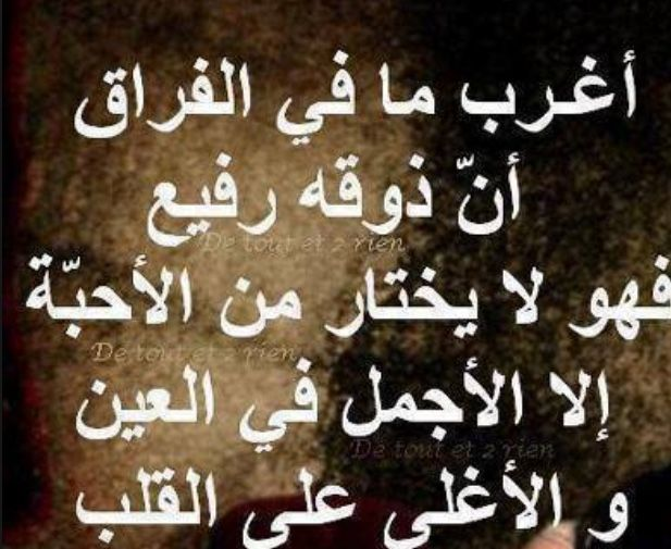Pin By Somayah Ameen On فراق الأحبة Words Quotes Arabic Calligraphy
