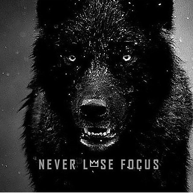 Lone Wolf Motivational Quotes