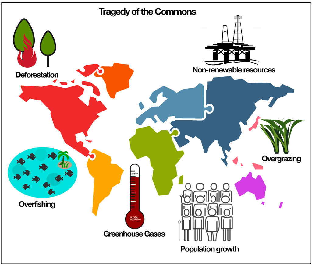 Tradegy Of The Common Graphic Tragedy Fashion Encyclopedia Eco Essay By Garrett Hardin Question