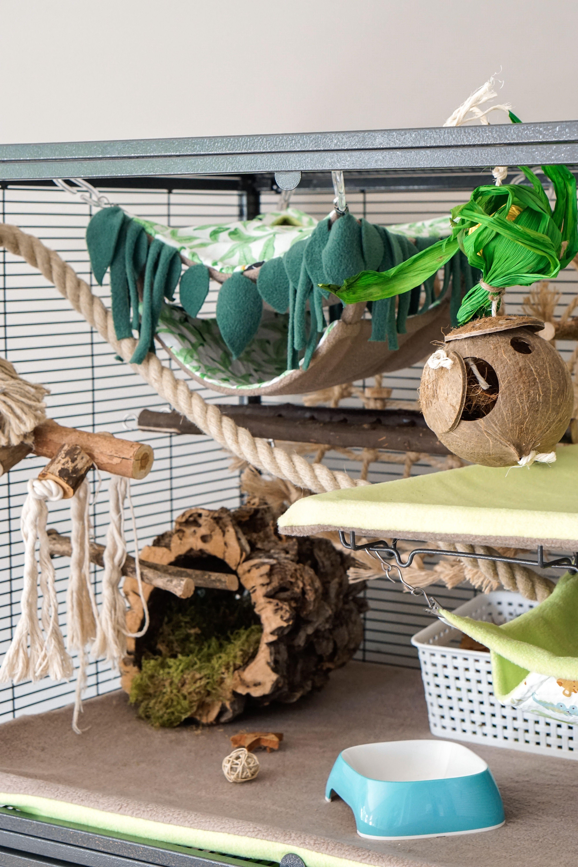 Top Half Critter Nation Jungle Theme   Rat cage, Pet mice, Rat toys