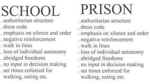 Is School Not In Fact A Kind Of Daytime Jail For Children Funny Education Quotes School Quotes Funny School Quotes