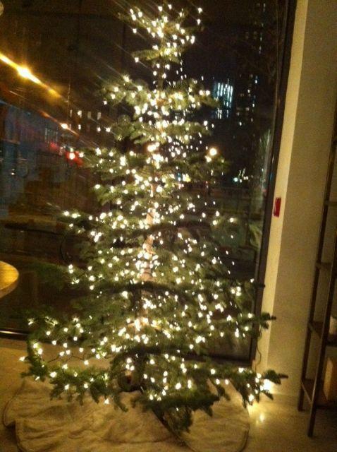 Oly Atelier S In New York Beautiful Silvertip Fir Furnished By Silvertip Tree Farm Fir Christmas Tree Tree Farms Christmas Tree