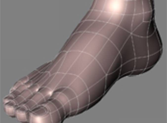 human feet – free 3D model ready for CG projects  Available formats