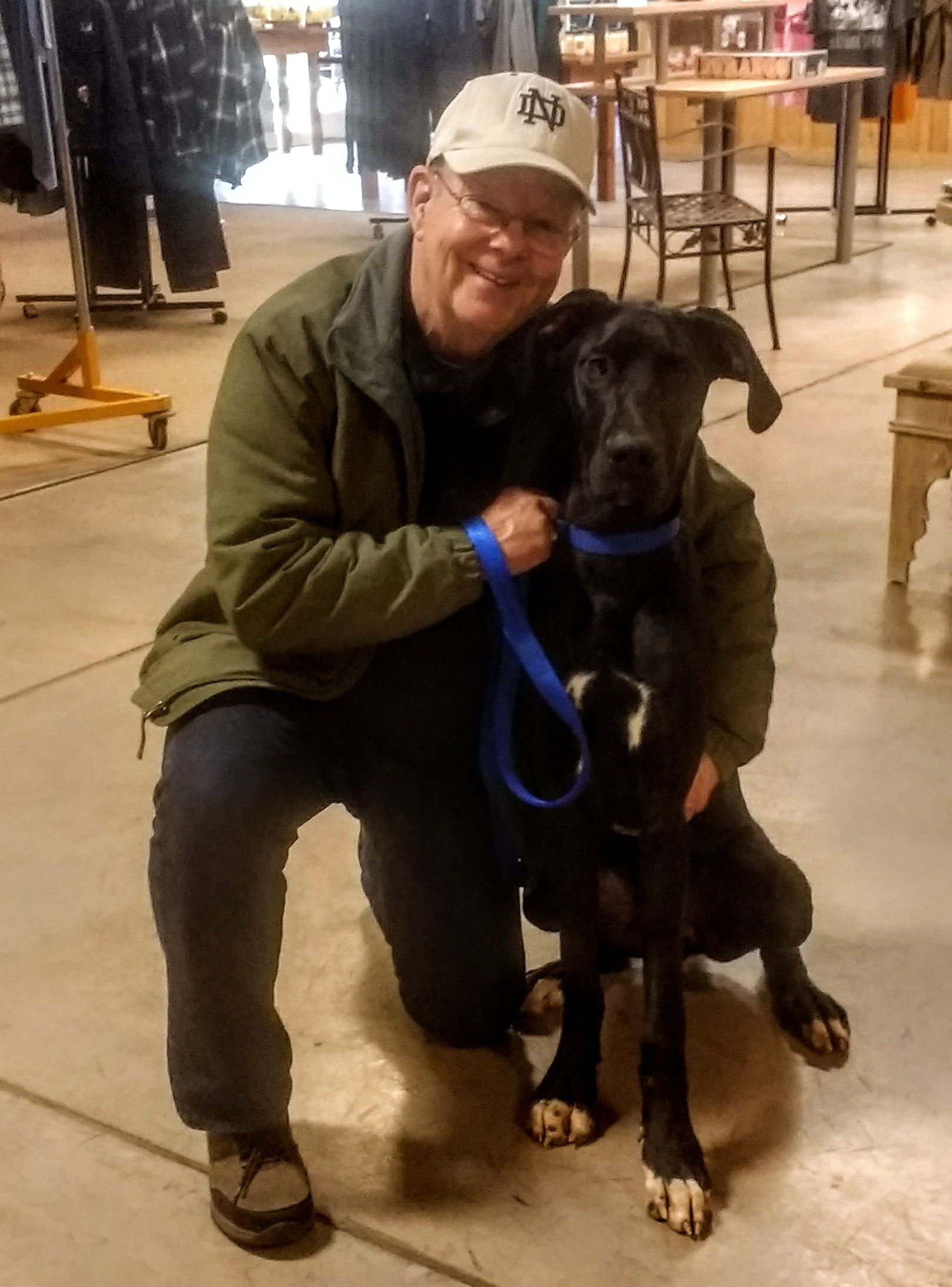 Thanks To Dave Pierman For Bringing In Atticus The Great Dane For