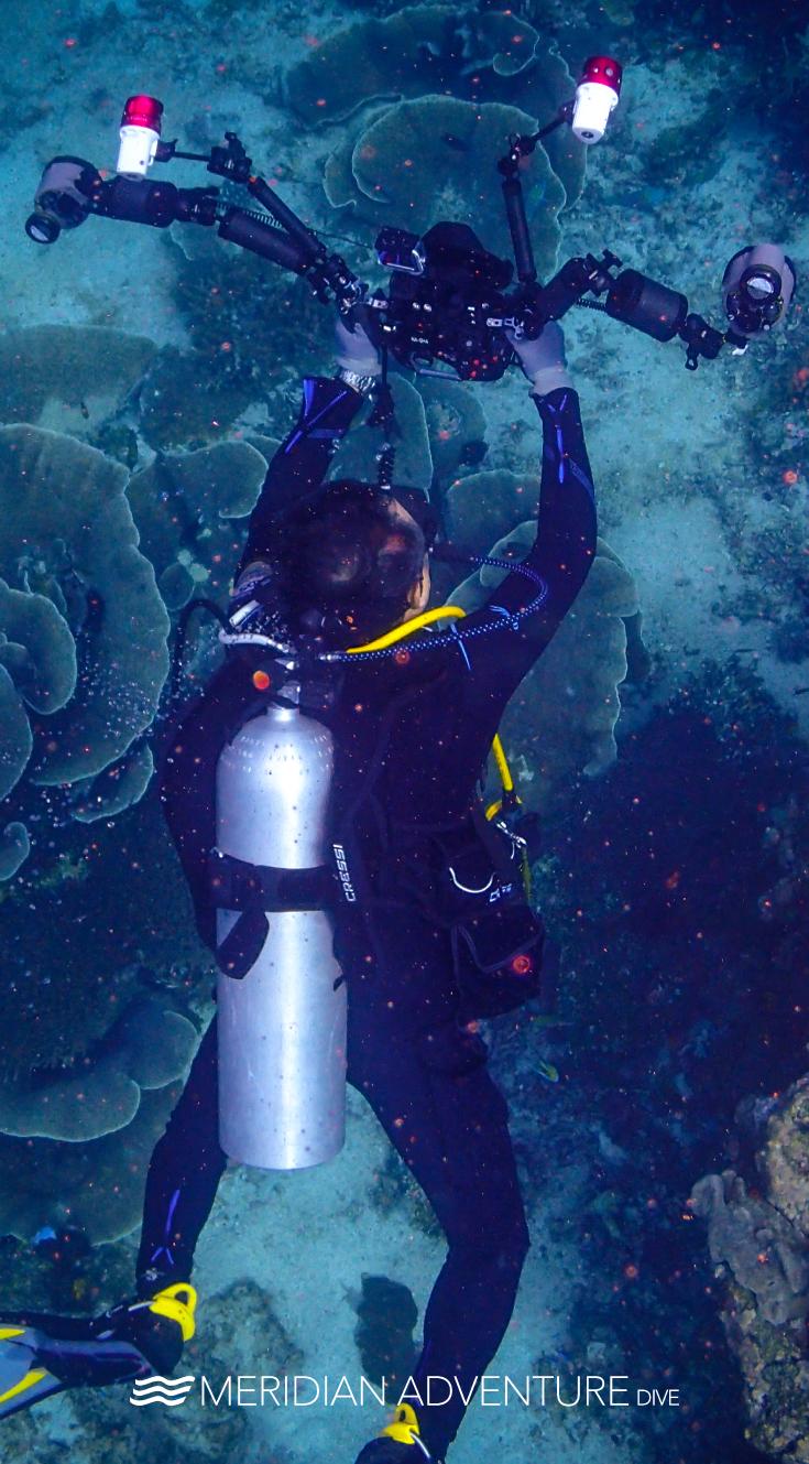 Pin By Meridian Adventure Dive Resort On Diving In 2020 Scuba Diving Diving Marina Resort