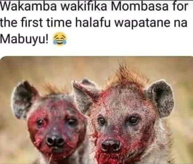 Pin By Estherakinyi On Kenyan Memes Really Funny Memes Funny Images Very Funny Jokes