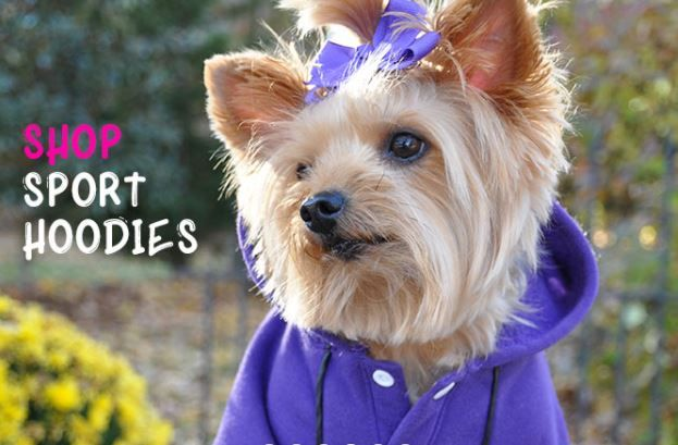 Buy All Size Designer Dog Apparel From Best Online Store Doggie