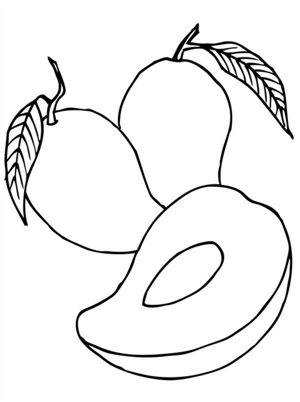 Mango Coloring Pages Fruit Coloring Pages Coloring Pages