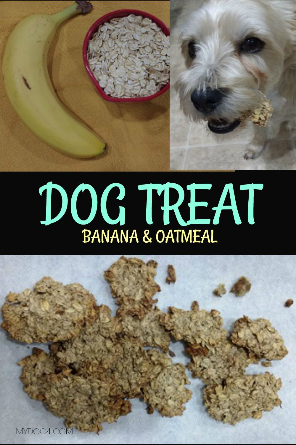 Dog Treat Dog Treats Dog Food Recipes Dog Biscuits
