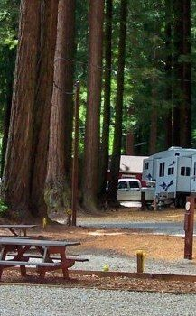 The Redwoods Rv Resort Crescent City Ca Road Trip Places Rv Parks