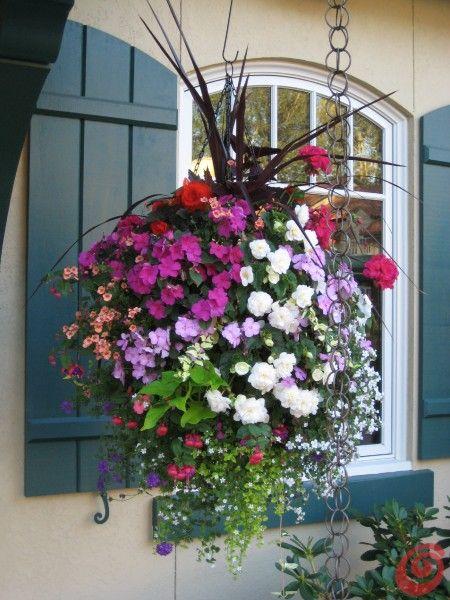 Il giardino in fioriera cesti da appendere vasi sospesi for Piante da fioriera