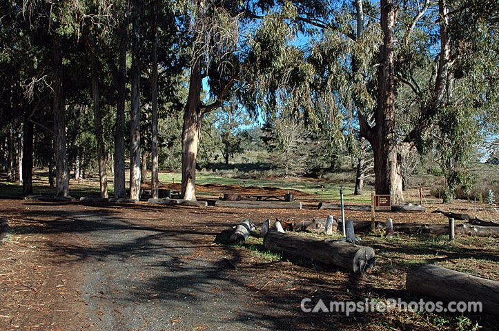 Morro Bay State Park Campsite Photos Info And