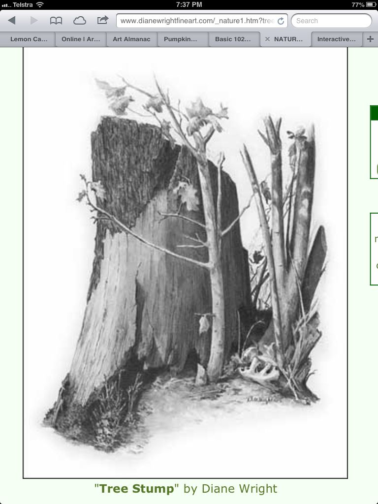 "Monochrome Kleuren ""tree Stump"" By Diane Wright 