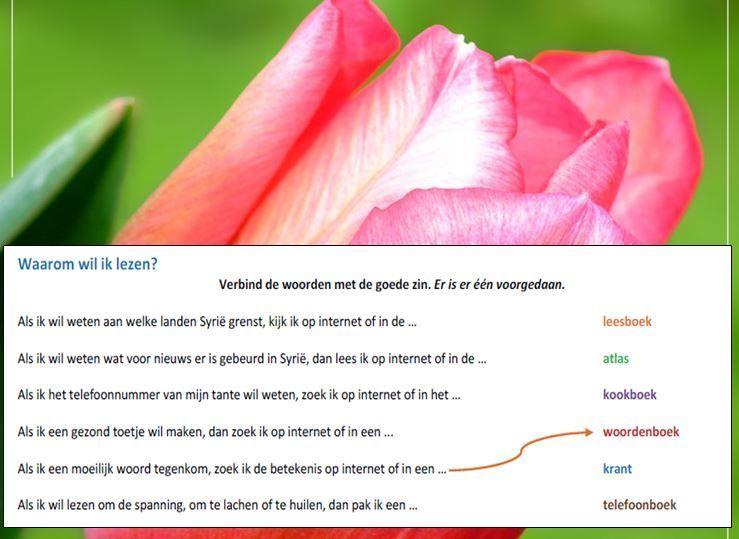 Ingrid docent Nederlands VO onderbouw :: irabegrlezen.yurls.net