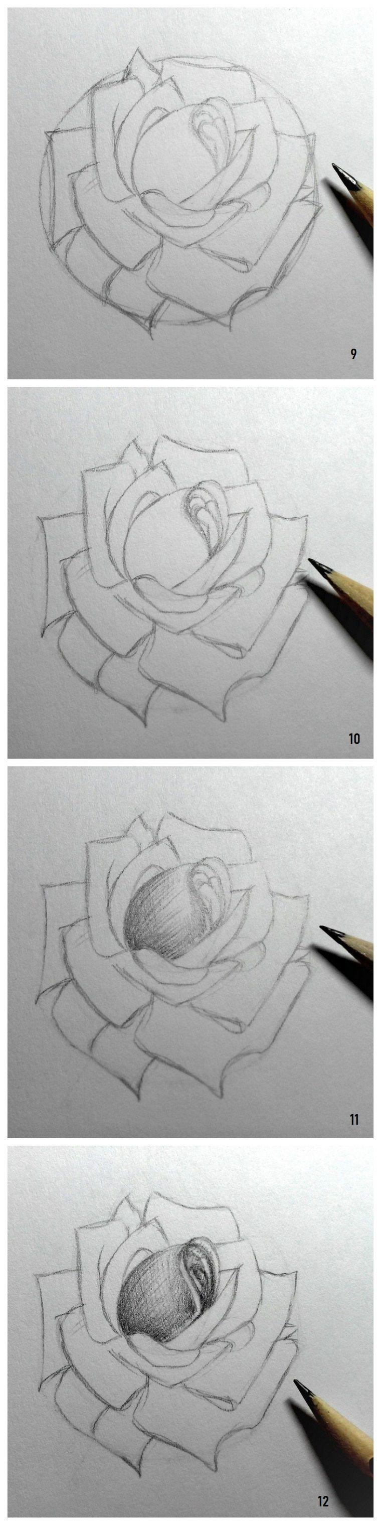 Disegni Da Copiare Facili E Belli Disegno Di Una Rosa Disegnare