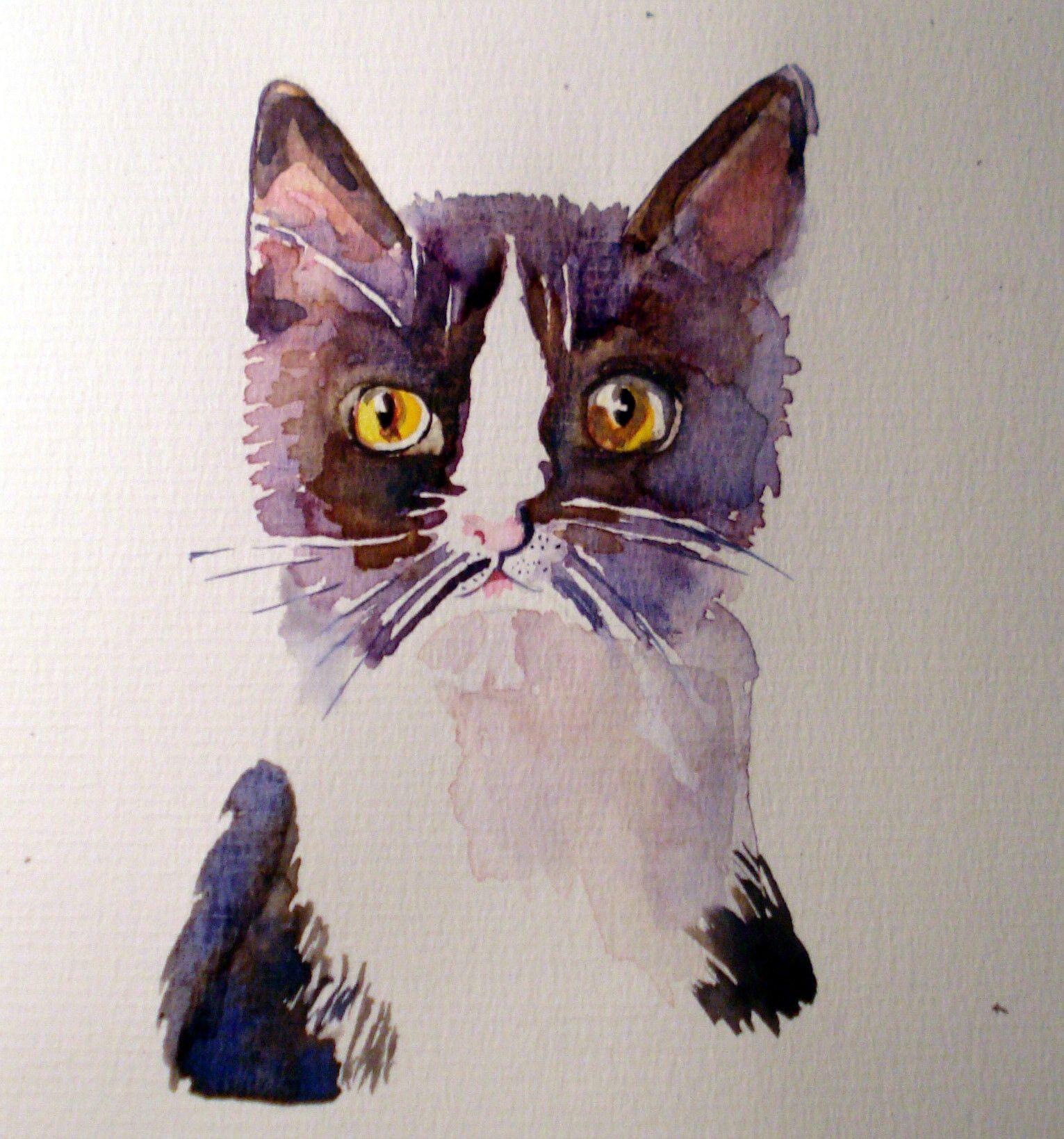 Cat/ Watercolor