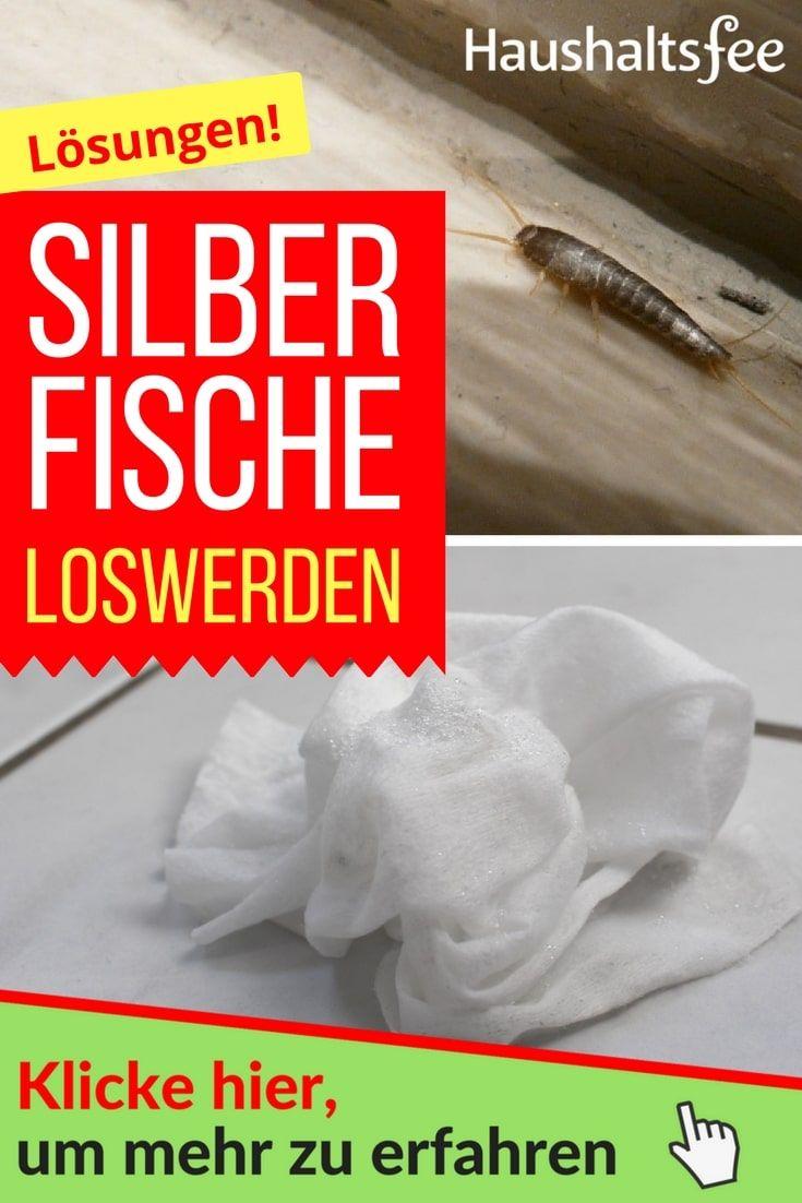 Silberfische bek mpfen beste tipps tricks tipps und - Glasduschwand reinigen ...