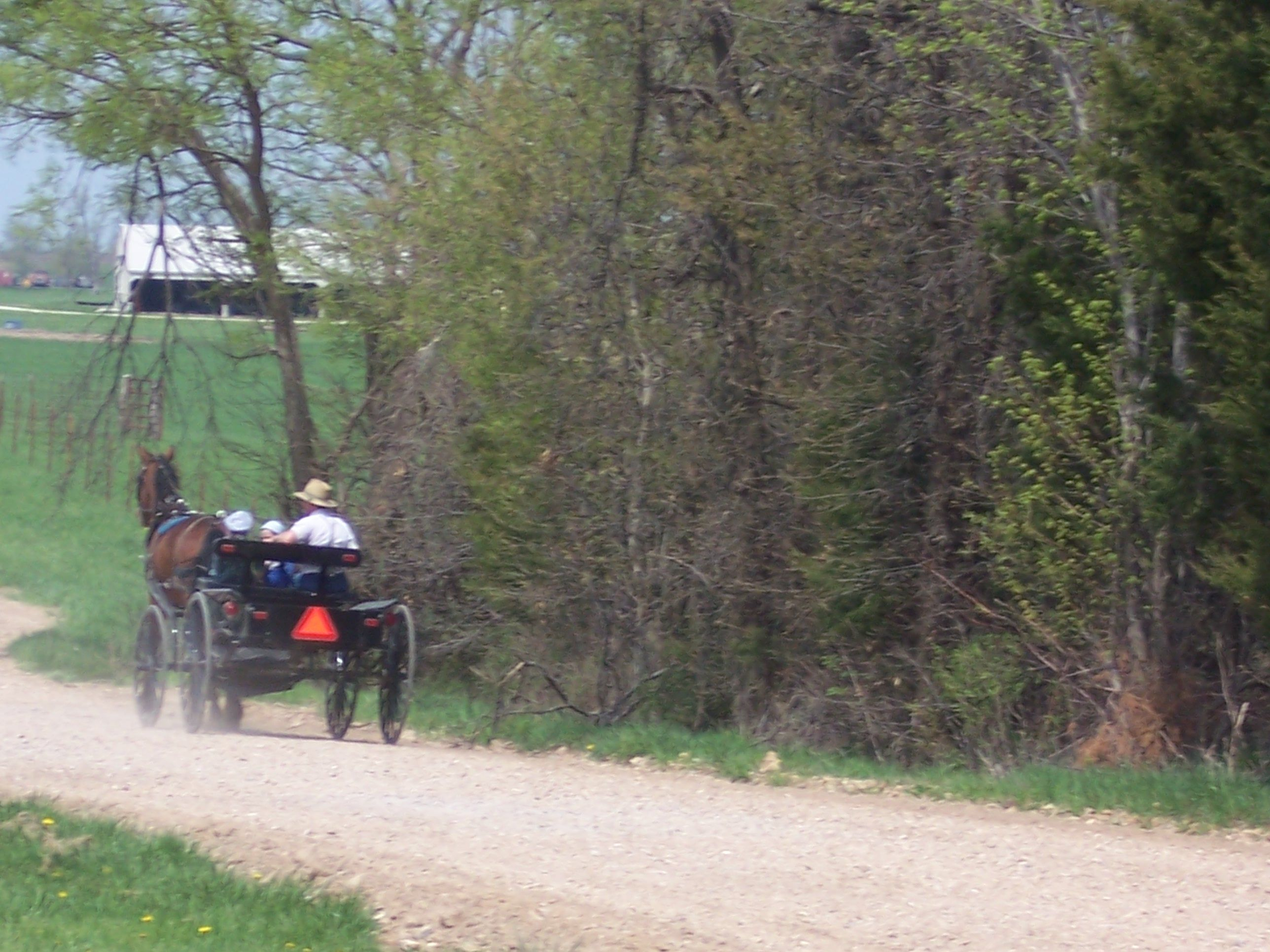 The Amish Near Versailles Missouri Missouri 50 States Of Usa Favorite Places