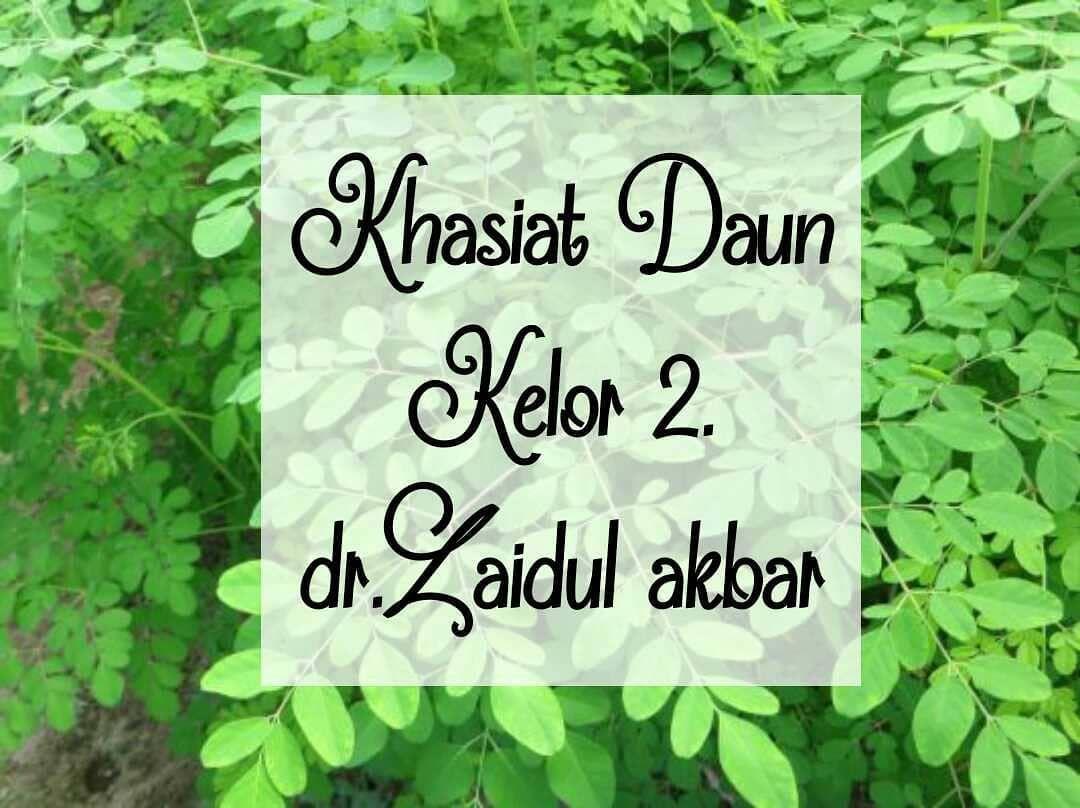 Repost From Zaidulakbar By Swiftsave App Bismillah Khasiat Daun Kelor Fermentasi Repost From Zaidulakbar By Swiftsave App B Daun Book Cover Repost
