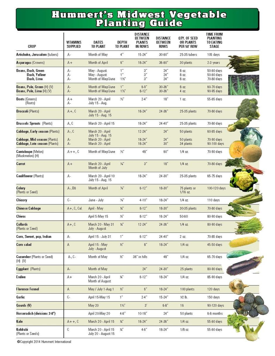 Gardening Tips Vegetable Planting Guide Planting Vegetables