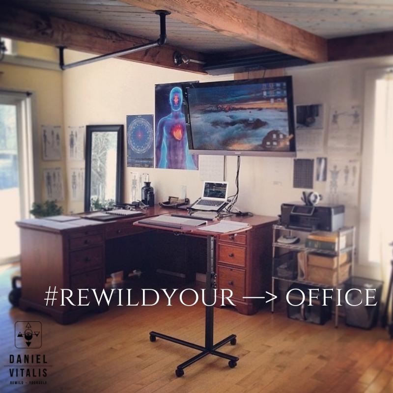 #rewildyour —> office!