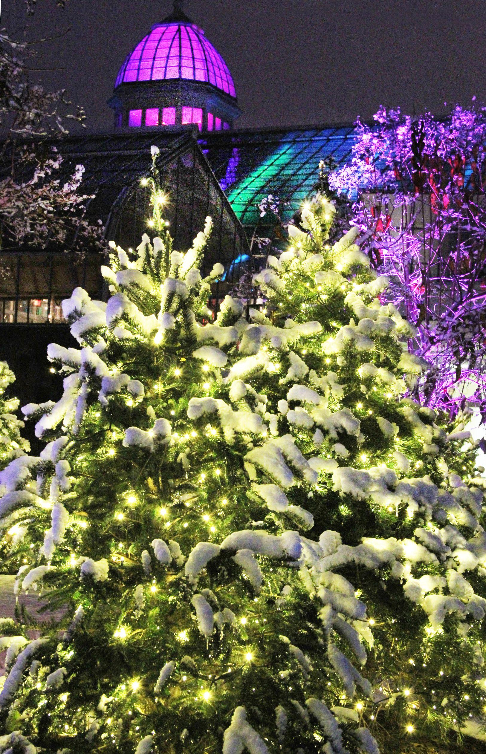 Franklin Park Conservatory Christmas Lights.Holiday Lights At Franklin Park Conservatory Columbus Oh