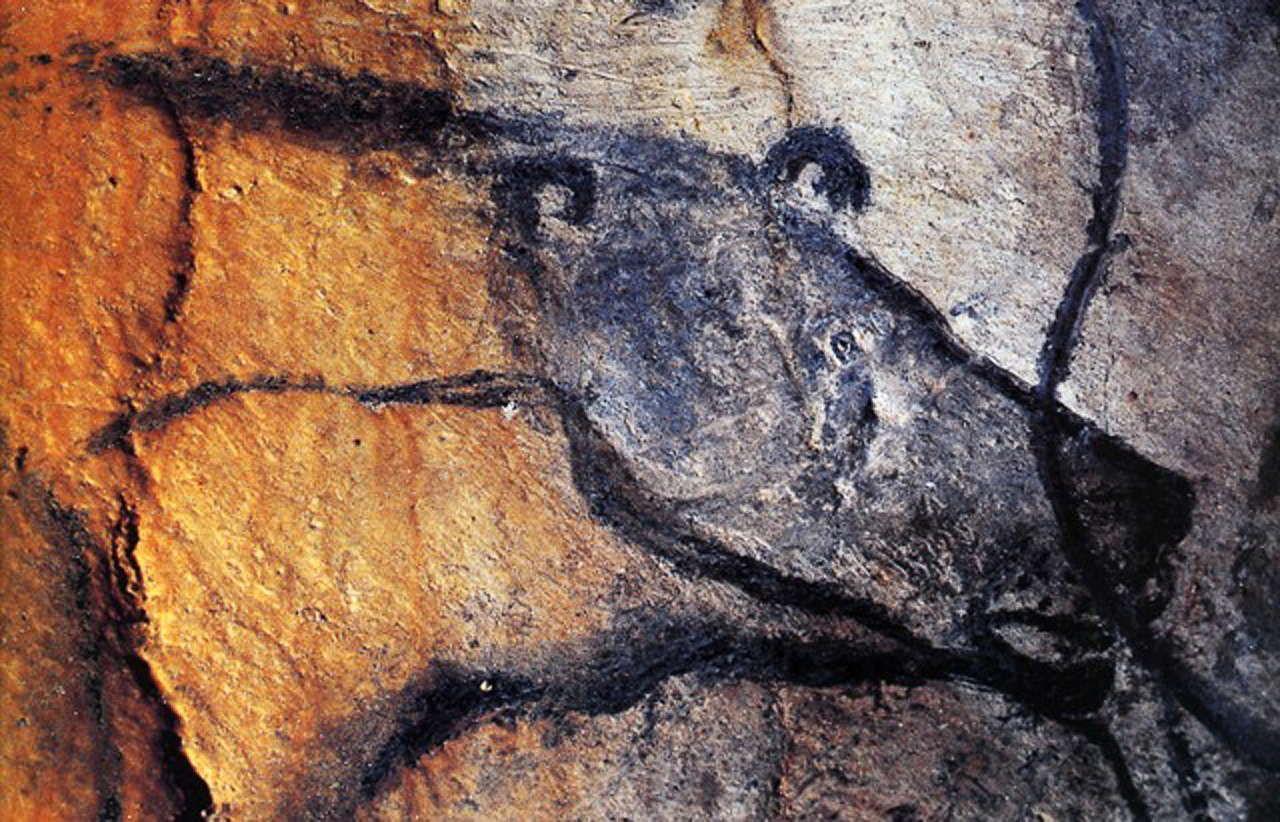 Chauvet bear | Cave bear, Chauvet cave, Art |Lascaux Cave Paintings Bear