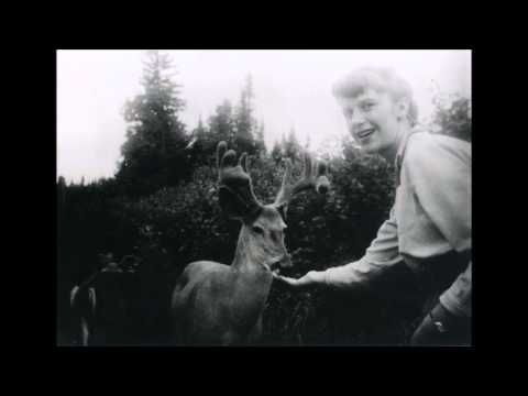 Sylvia Plath - Tulipani - YouTube