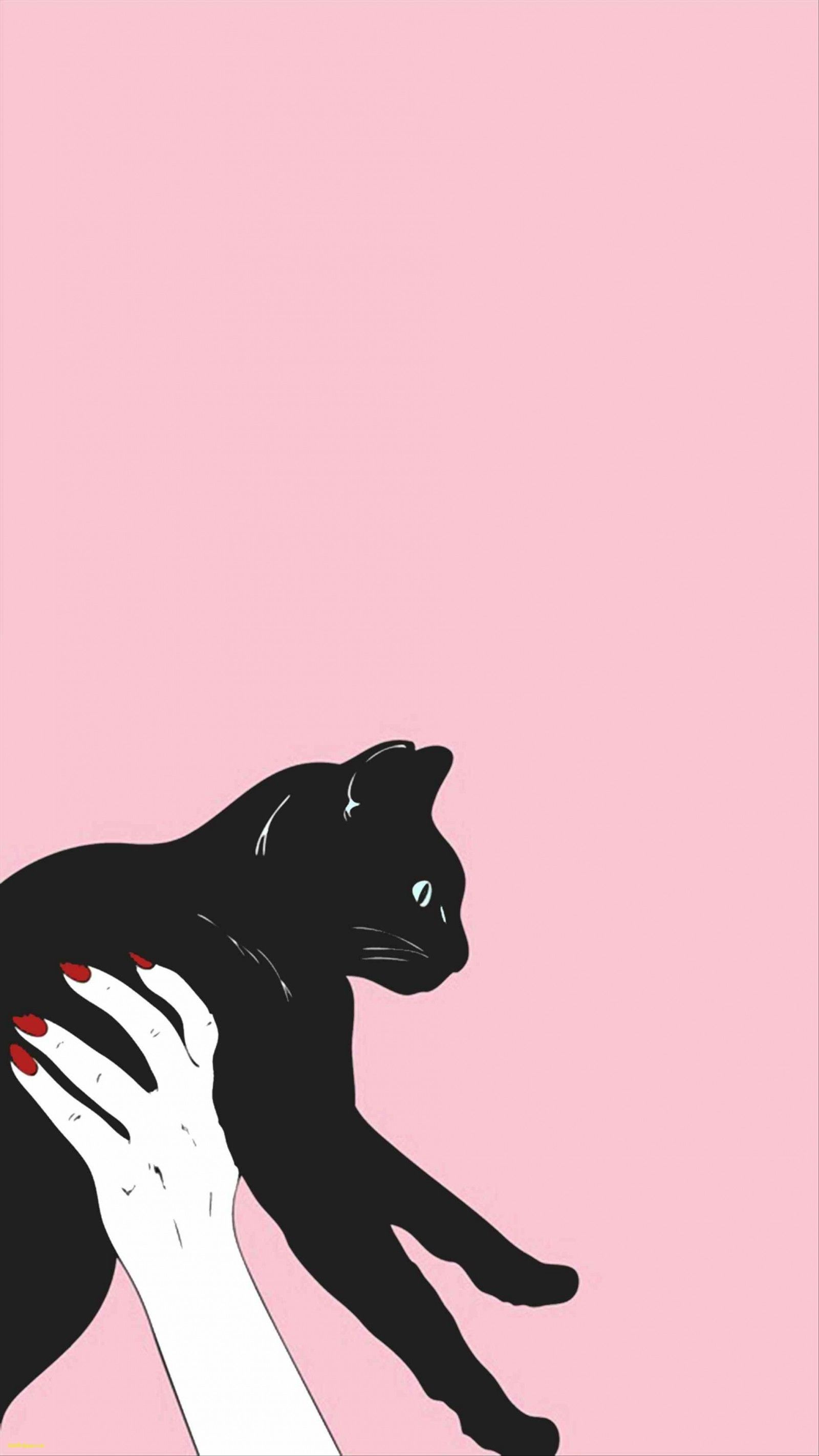 Cute Wallpaper Tumblr Awesome Iphone S Pinterest More And Cute For Plus Hd Animal Cute Cat Iphone Wallpaper Cat Cat Wallpaper Tumblr Wallpaper