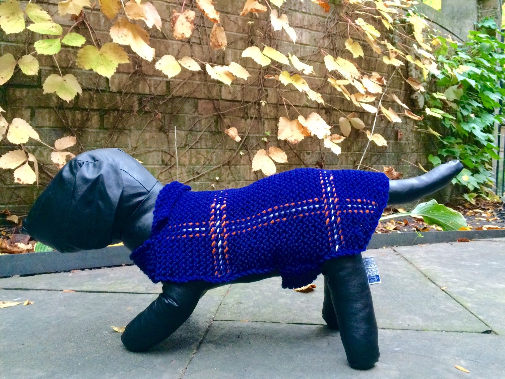 Tartan sweater for a traditionalist. Pet clothes