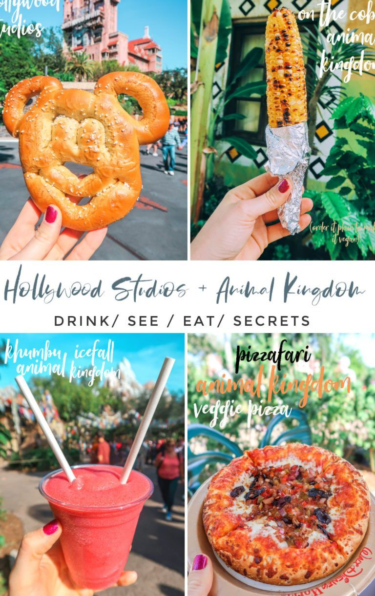 Our Day at Disney's Hollywood Studios & Animal Kingdom – Simply Taralynn