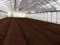 Efficient Layout, Bed Preparation and Crop Selection for High Tunnels