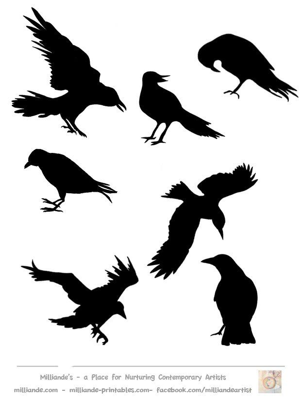 Crow Silhouette Template Collection, Free Printable Bird Silhoutte ...