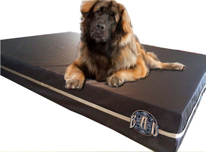 Dark Brown Xl Chew Proof Dog Bed The Best Dog Bed For Destructive Dogs Www Bigassdogcompany Co Chew Proof Dog Bed Indestructable Dog Bed Orthopedic Dog Bed
