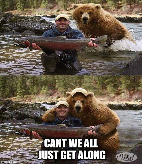 30 Funny Animal Memes To Make You Laugh Till You Drop Lovely Animals World Animal Memes Funny Animal Memes Funny Animal Pictures,Restaurant Decorating Ideas Valentines Decoration