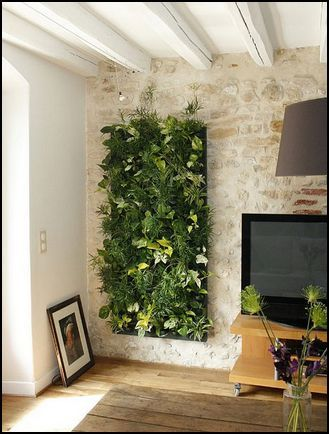Decoración paredes con plantas Inside Design Pinterest Inside - decoracion de paredes