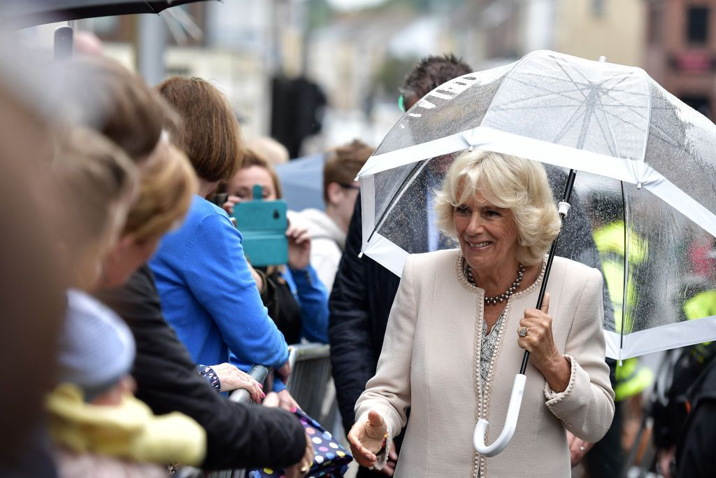 See and Save As camilla parker bowles captured braless