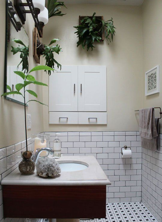 Plants In The Bathroom Inspiration From Our House Tours Bathroom Plants Bathroom Plants Decor Tidy Bathroom Great cure for windowless room