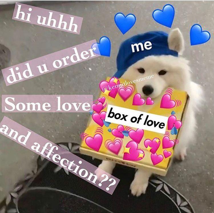 Pin By Larissa Cassiano On Para O Cute Love Memes Love You Meme Cute Memes