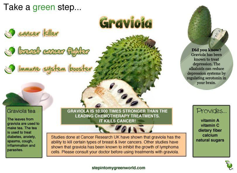 graviola fruit healthy fruit snacks for adults