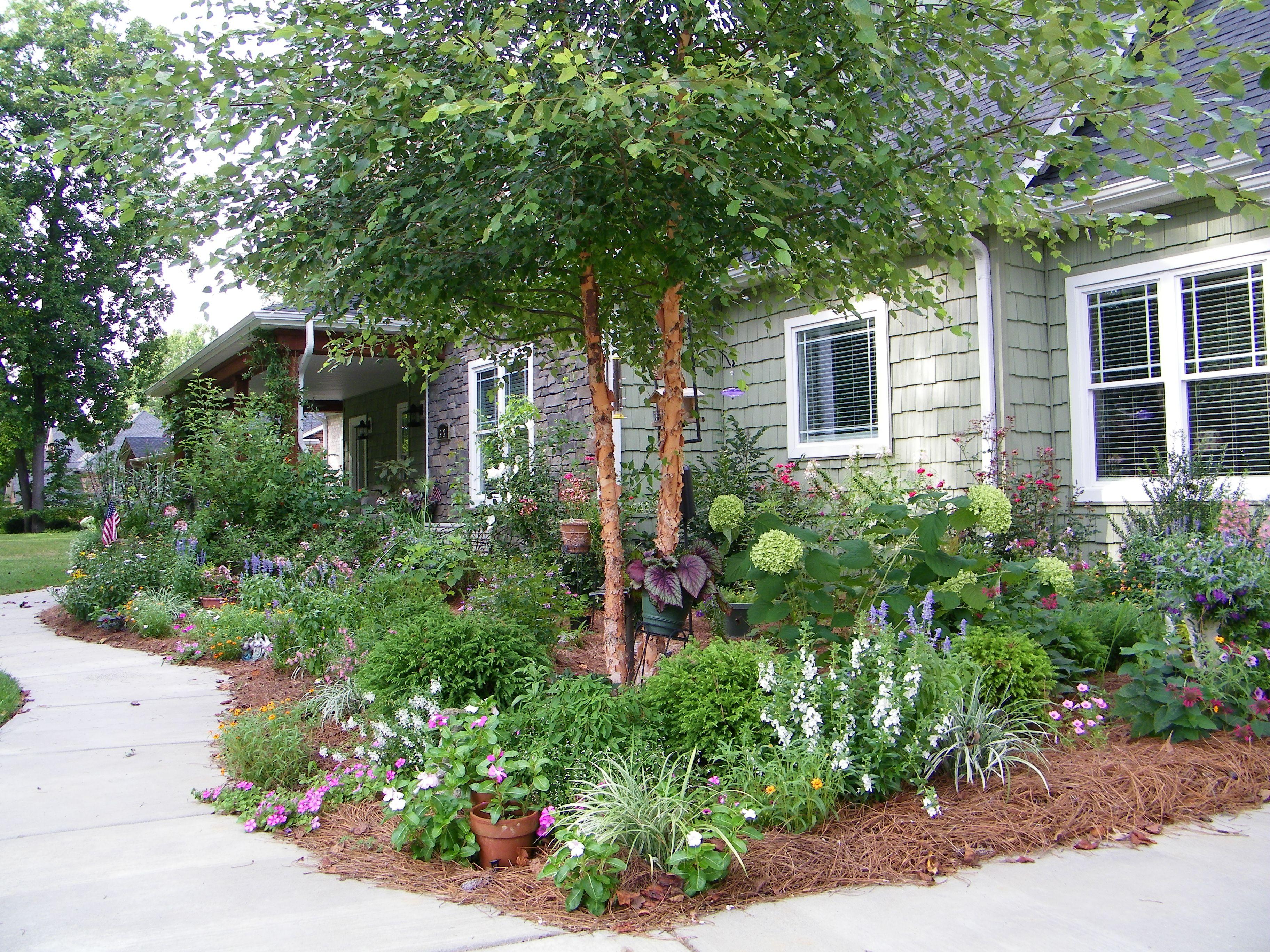Nothing like hydrangeas in a bouquet limelight hydrangea for Quick garden design ideas