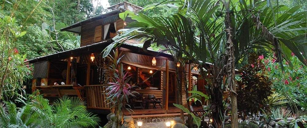 pictures of jungle houses | Congo Bongo Jungle House