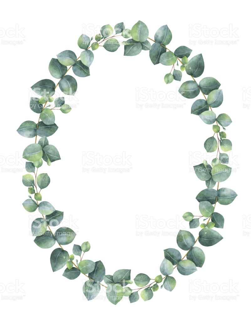 Image Result For Eucalyptus Wreath Clip Art Kranz