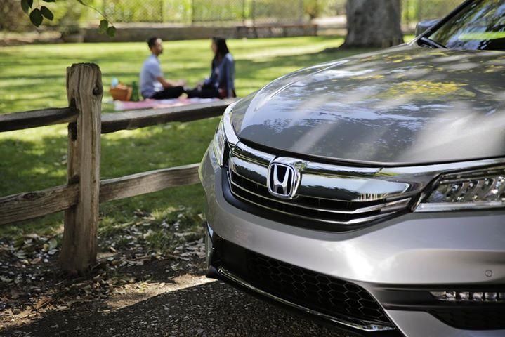 A Picnic Perfect For Two Plus Your Honda Accord Honda Dealership Honda Honda Accord