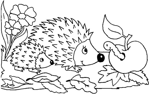 Mother Hedgehog And Her Baby Meet Caterpillar Colouring Pages Coloring Page Bulk Color Hedgehog Colors Apple Coloring Pages Coloring Pages
